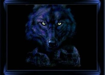 3d Wolf Screensavers Download The Free Wolf Eyes Wallpaper Download Free Screensavers