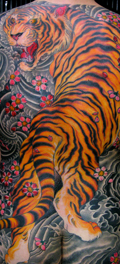 Tiger, Cherry Blossoms, Japanese, Chris O'Donnell, Saved Tattoo