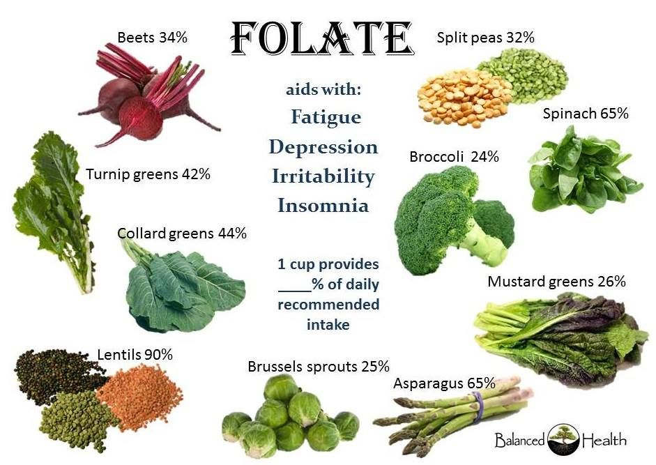 whole food plant based diet insomnia