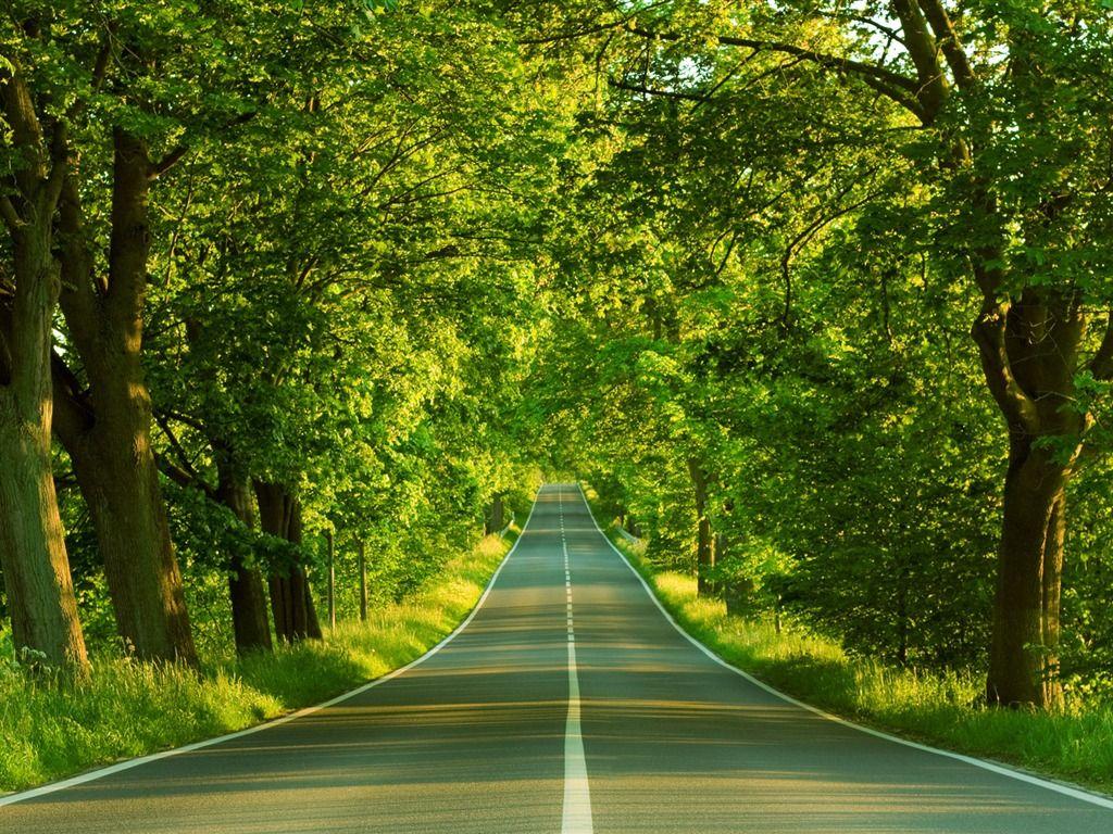 nature wallpaper | Beautiful Nature Wallpaper | Places to Visit ...
