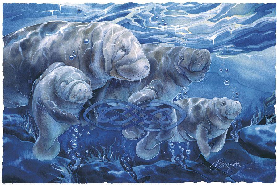 Bergsma Gallery Press::Paintings::Sea Life::Manatees::Manatees Forever - Prints