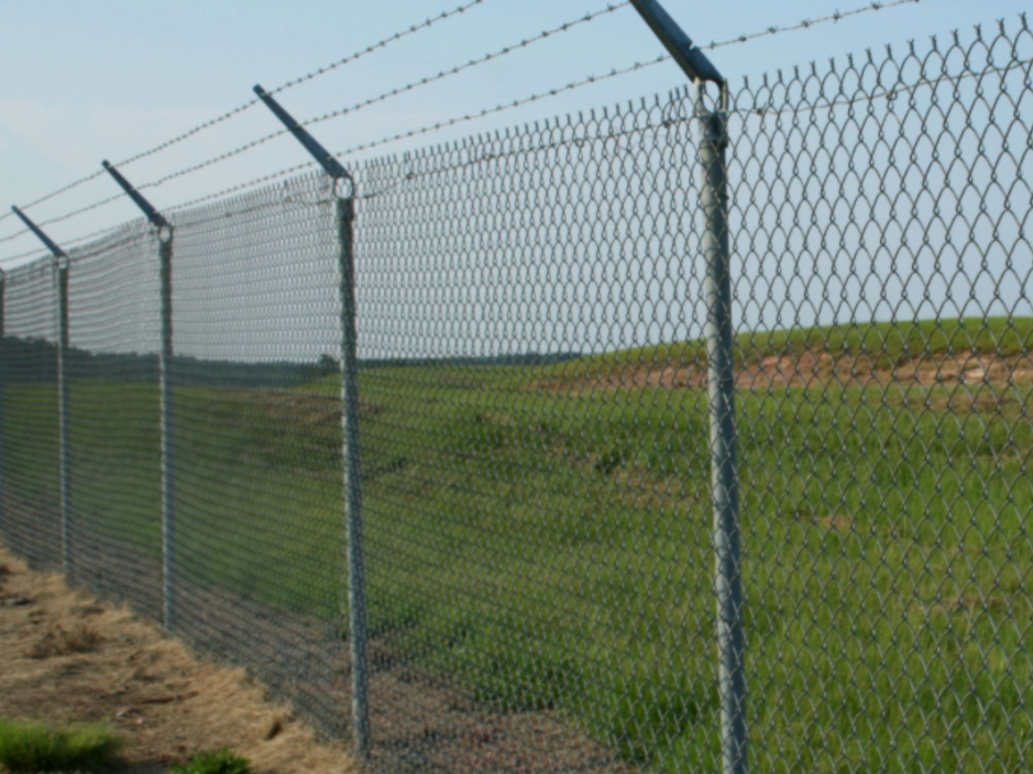 The Fence Is Well Guarded By Dauntless Workers, And Nothing