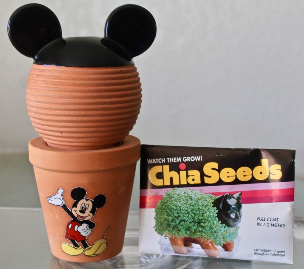 Disney Mickey Mouse Chia Pet Decorative Planter Terracotta New