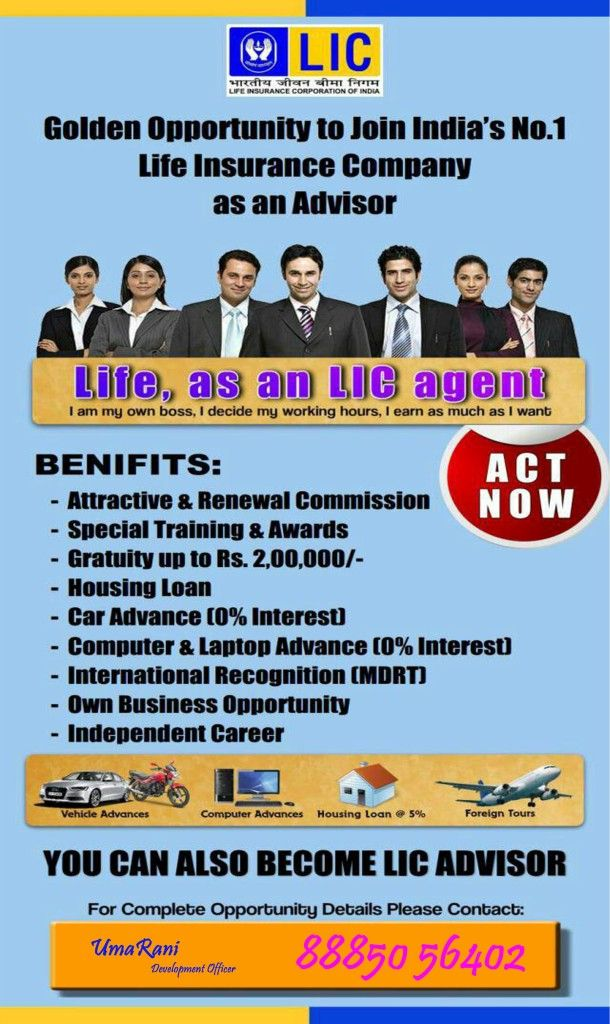 City Career Agents For Lic Of India Hyderabad Banking Financial