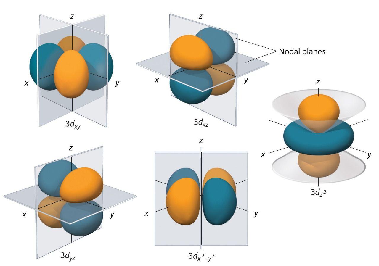 Shapes Of D Orbital
