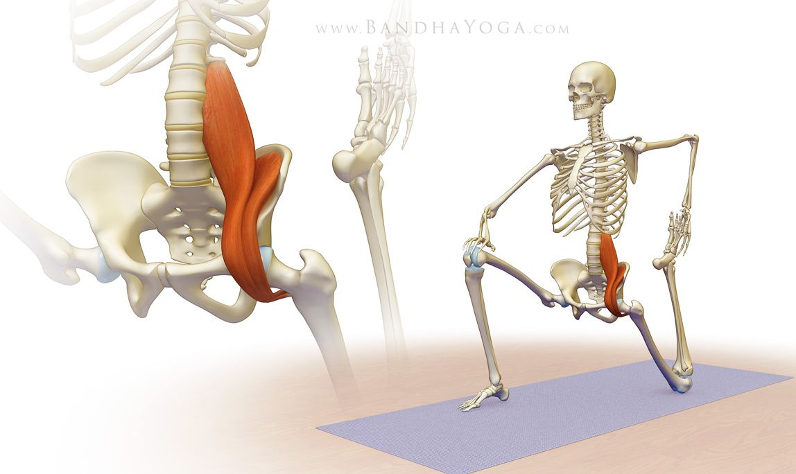 The Psoas Awakening Series synergistically combines the standing ...