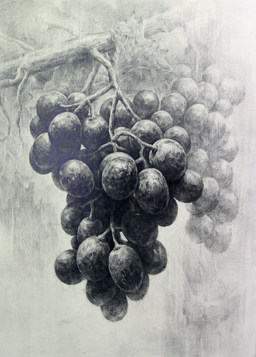 grapes 2 by indiart3612.deviantart.com on @deviantART