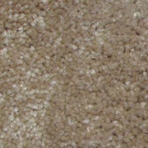 Best In Show I Sandstone Trackless Carpet Okc First Step Flooring Carpet Sandstone Best