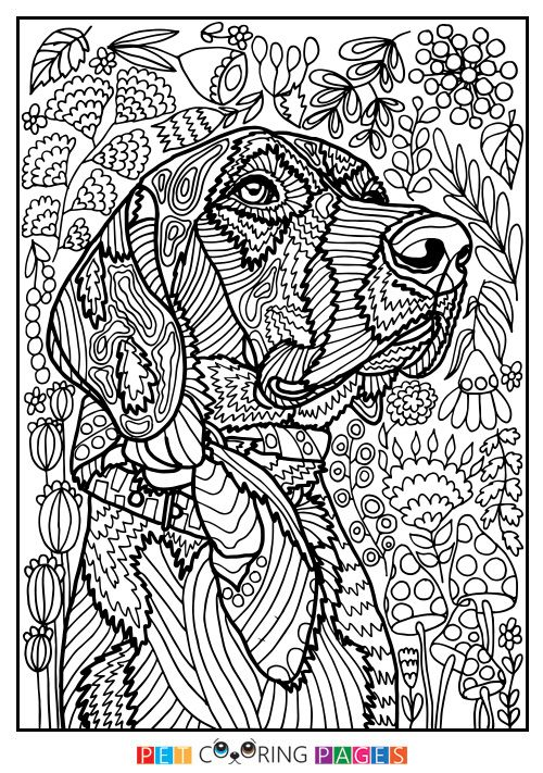 """Free printable Mutt coloring page """"Rodžers"""" available for ..."""