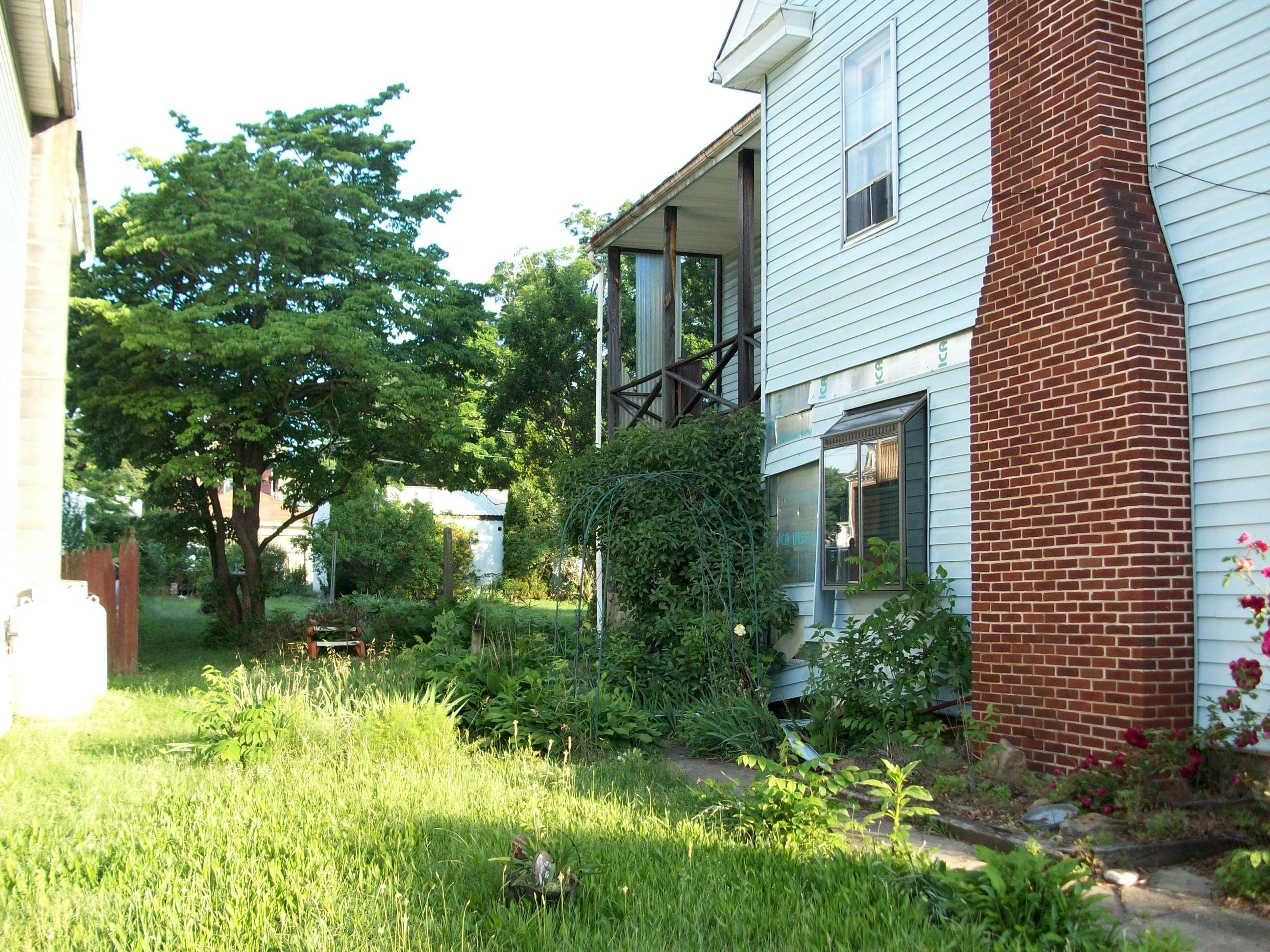 Over grown garden, deserted house, potential but lots and lots of ...