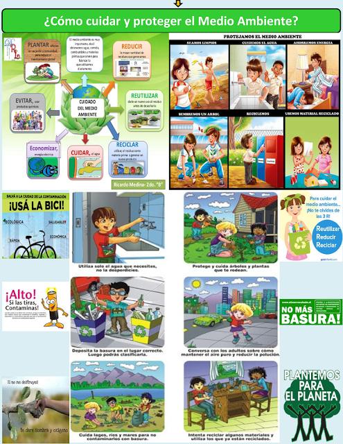 Como Cuidar Y Proteger El Medio Ambiente Medio Ambiente Elementos Del Medio Ambiente Medio Ambiente Dibujo