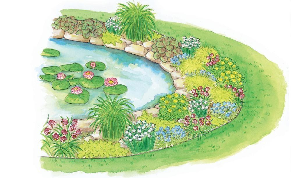zum nachmachen: einen teichrand mit pflanzen gestalten | hüte, Garten und erstellen