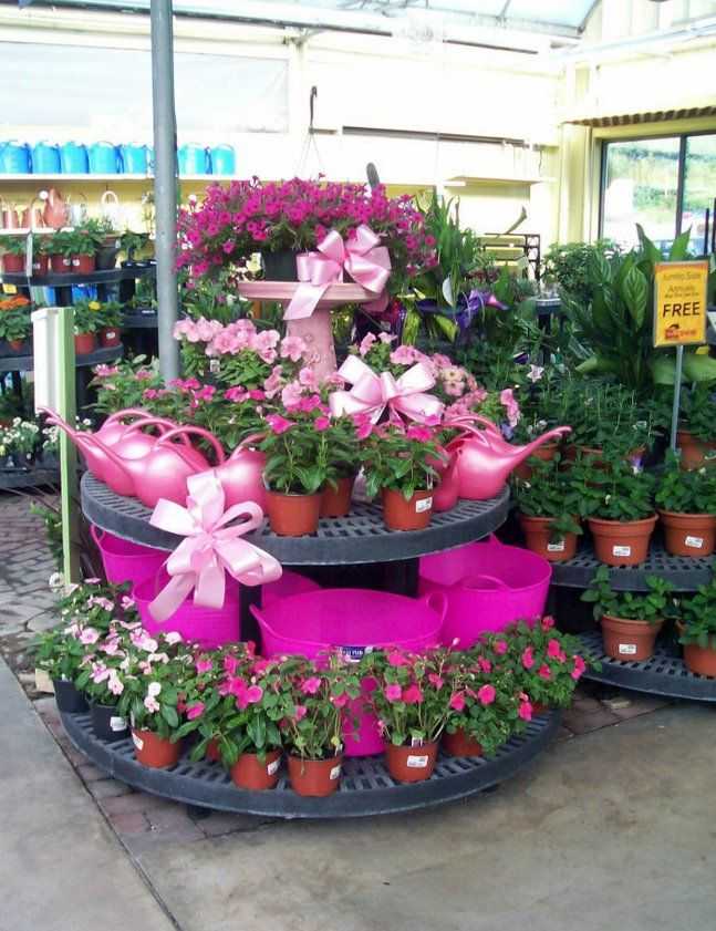 From Stauffers Of Kissel Hill Garden Center East York Garden