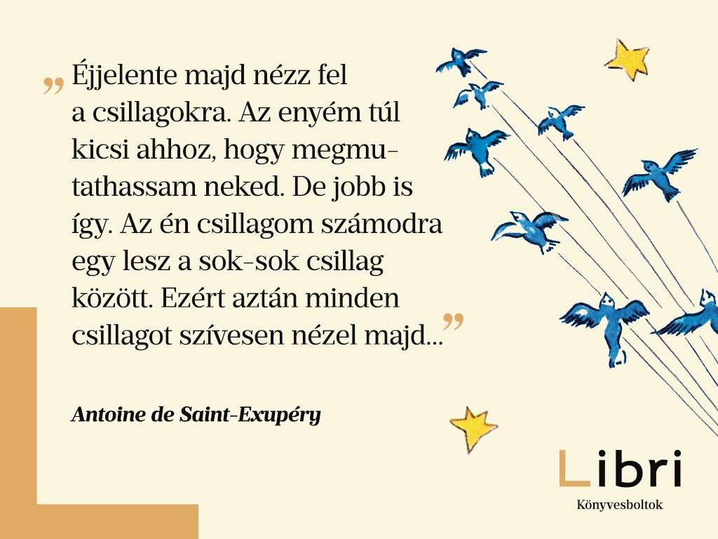kis herceg idézetek barátságról Antoine de Saint Exupéry idézet | Inspirational quotes, Friendship