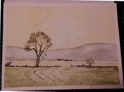 Watercolour a first attempt