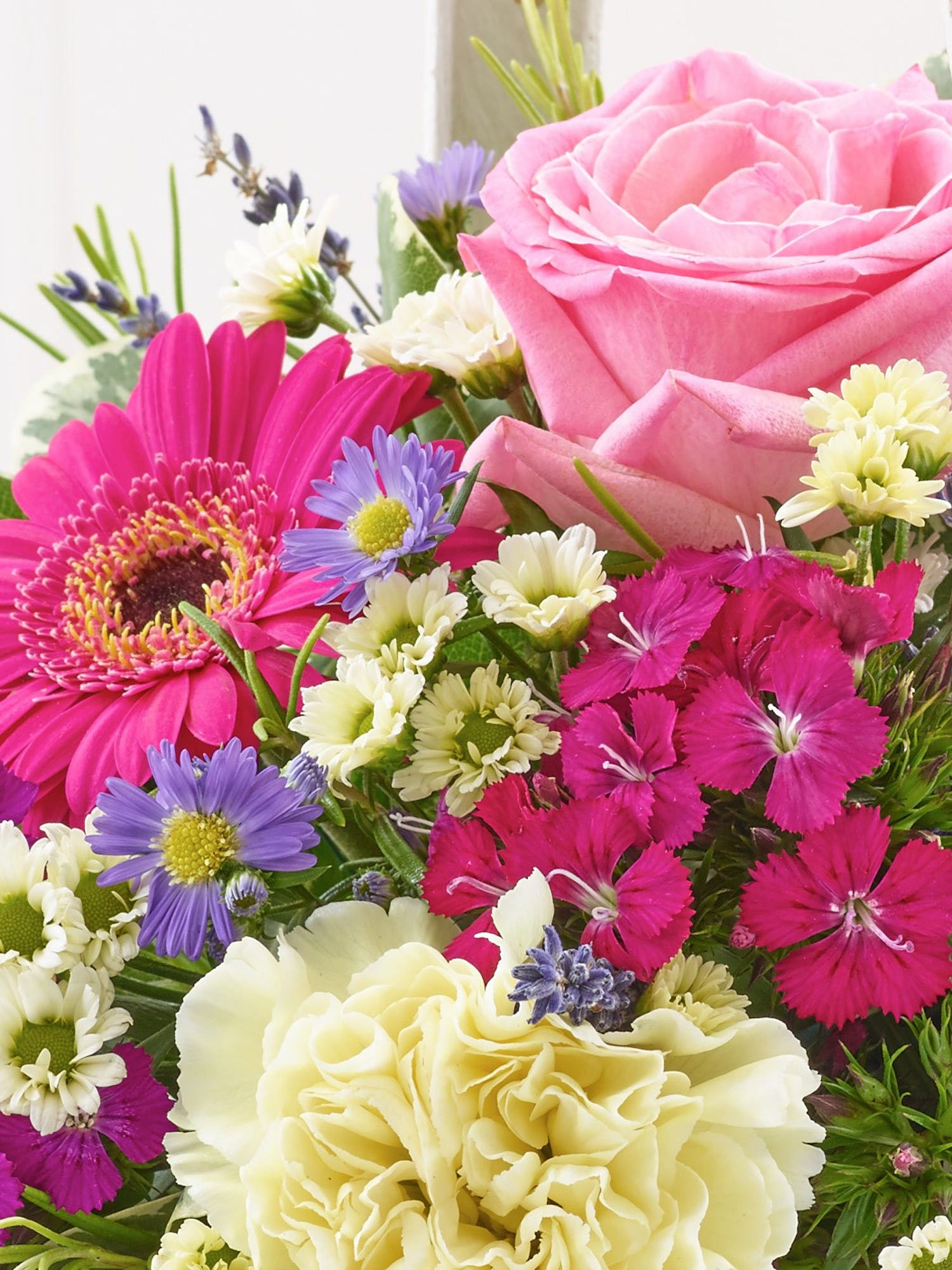 Summer Basket Summer baskets, September flowers, Flowers