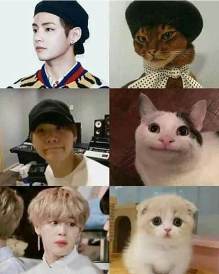Reactii Bts Cute 18 Si Umor 1 Terminată Bts Funny Bts Memes Kpop Memes Bts Bts cute and funny wallpapers