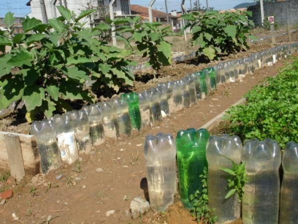 100 Ideas De Huerta Jardín De Vegetales Cultivo De Plantas Huerta En Macetas