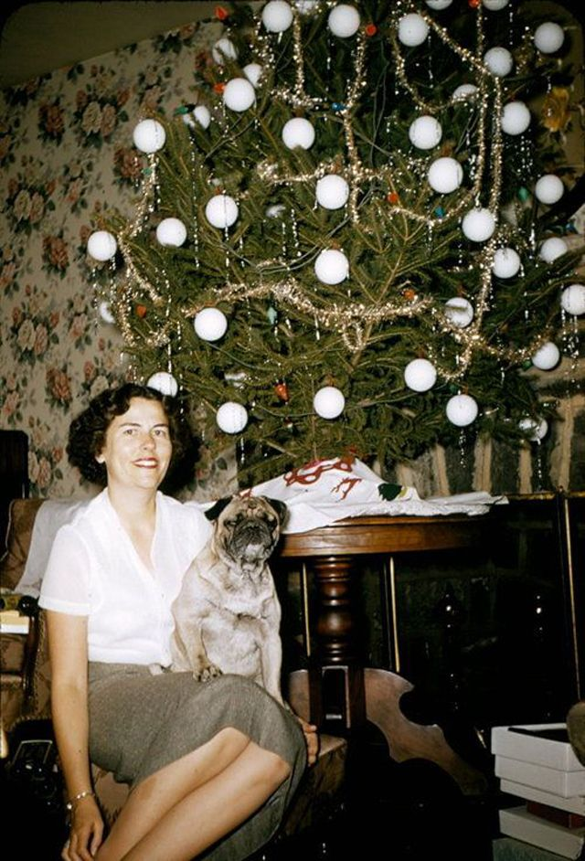 Mid-Century Women Enjoying Real Christmas Trees
