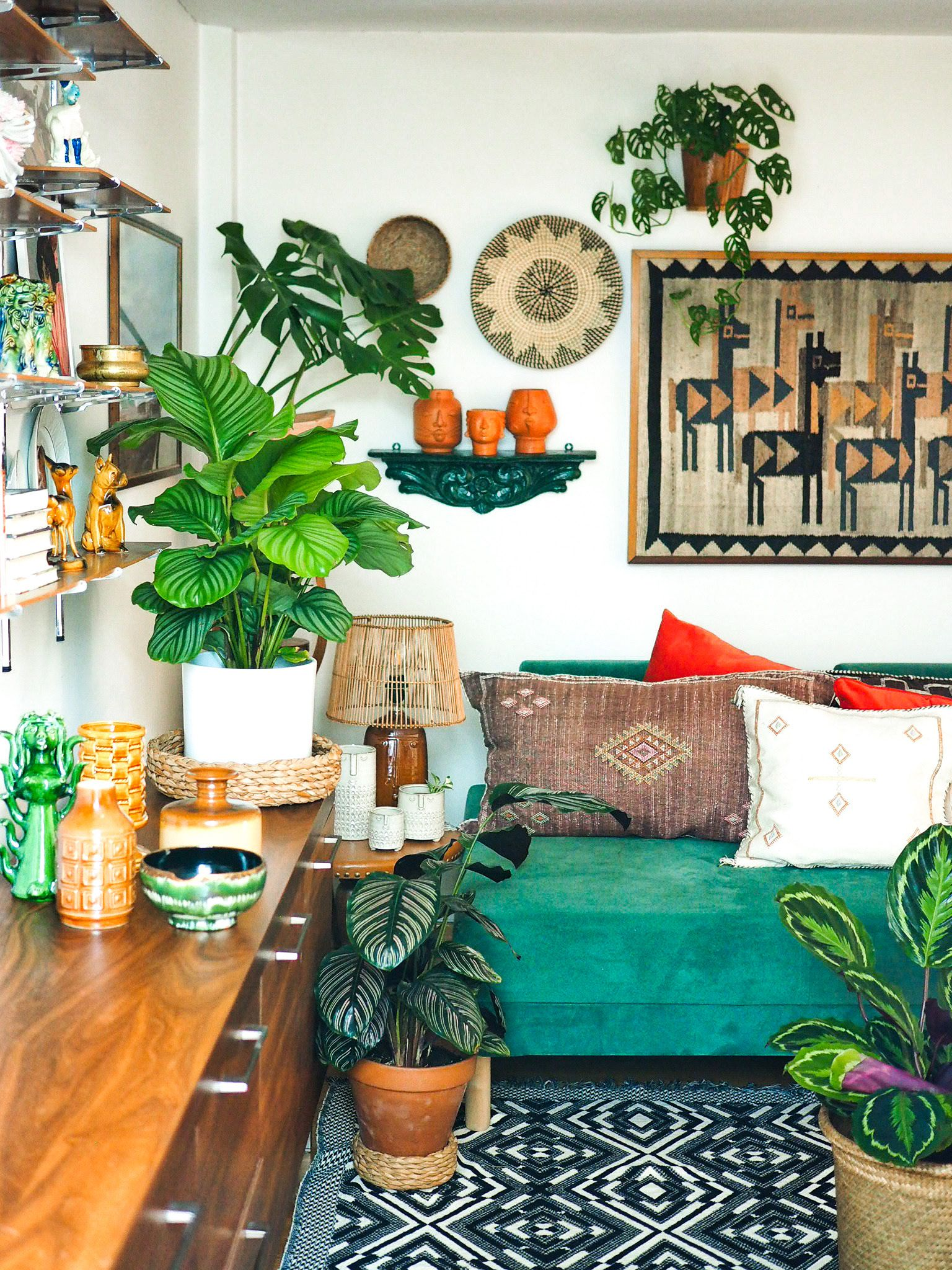 How to start an indoor garden at home and how to maintain it once you have one: