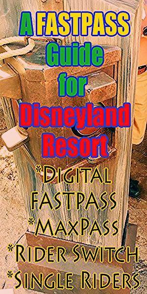 Photo of Disneyland Tips