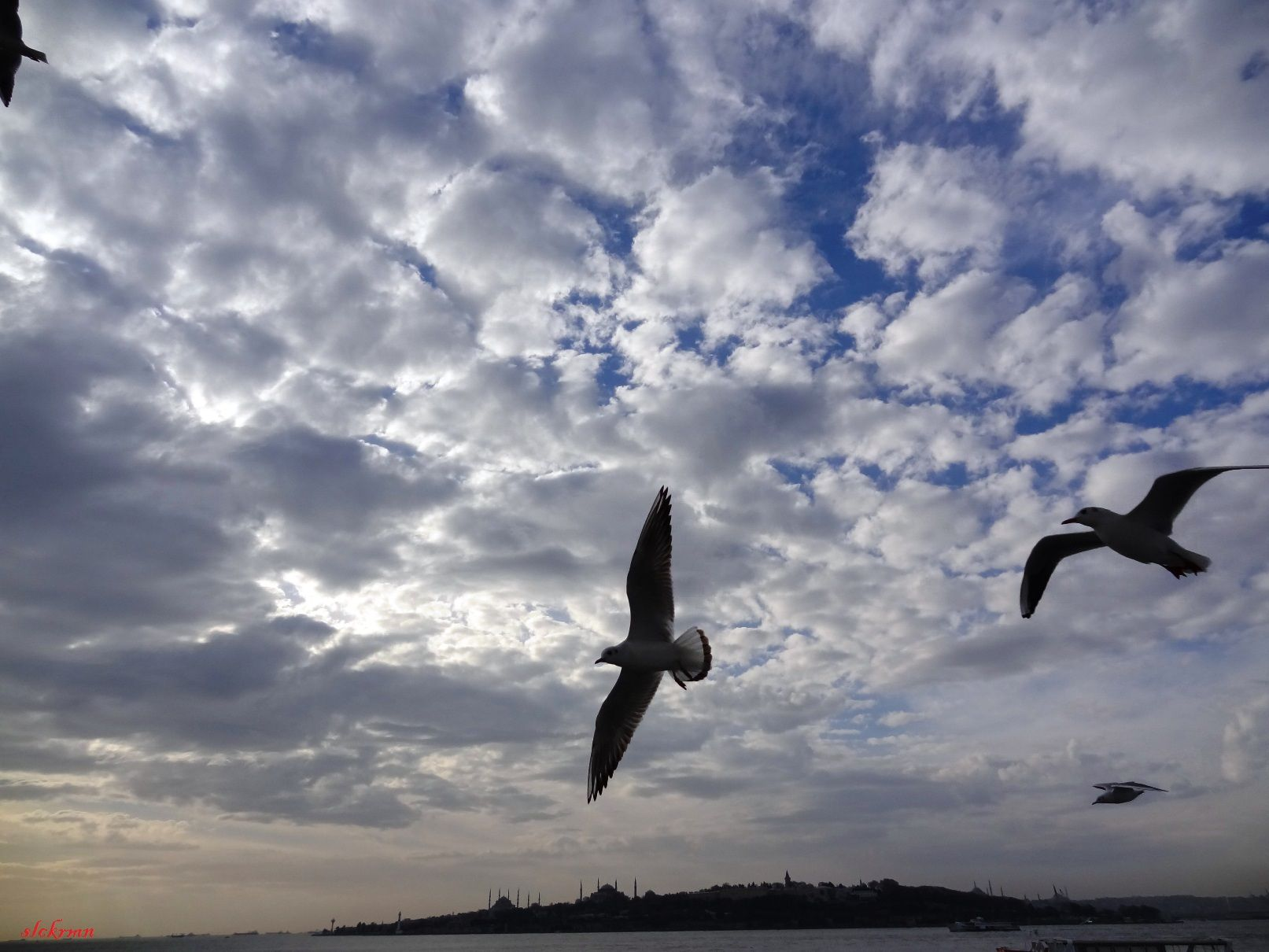 istanbul by sony DSC-Hx9v slckrmn
