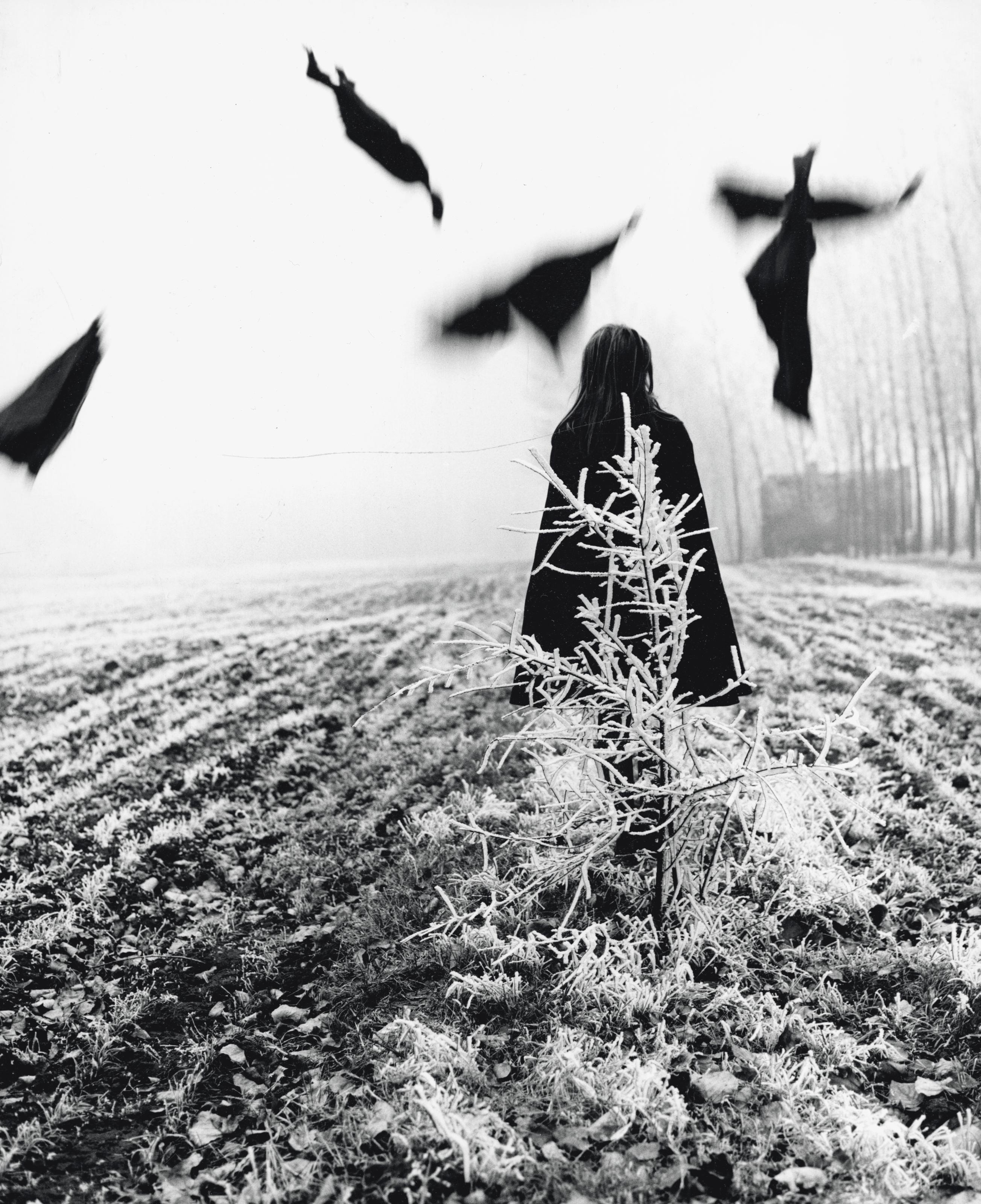 Scarecrow, 1968 - by Mario Lasalandra (1933), Italian ...