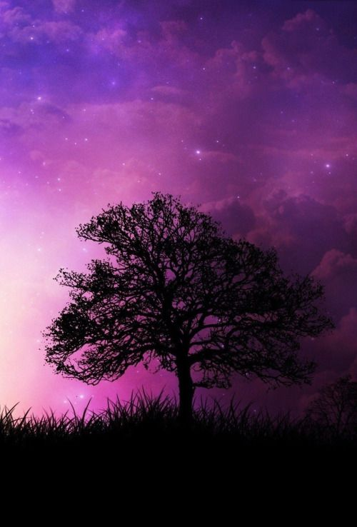 Parallaxwallpapers Abstract Nature Nature Wallpaper What Color Is Violet