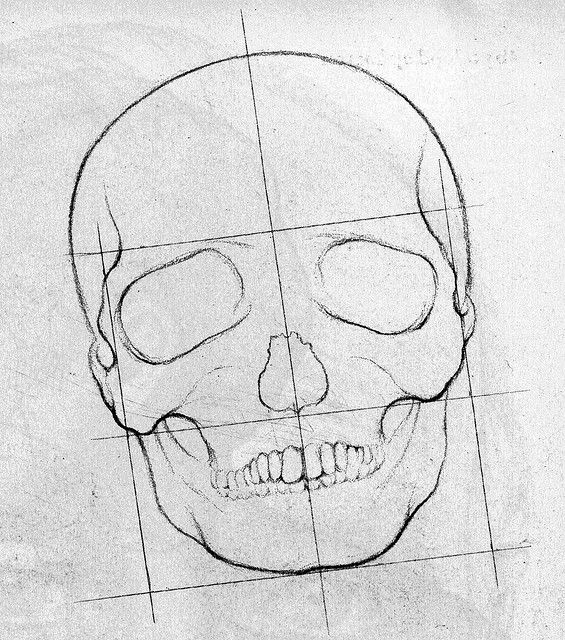 Scribble Drawing Of Face : How to draw a skeleton step by face learn sketch