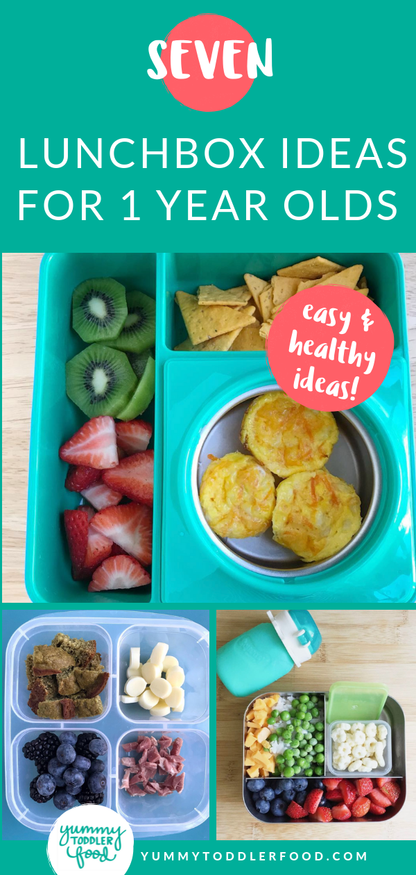7 Lunch Box Ideas for 1 Year Olds Baby food recipes