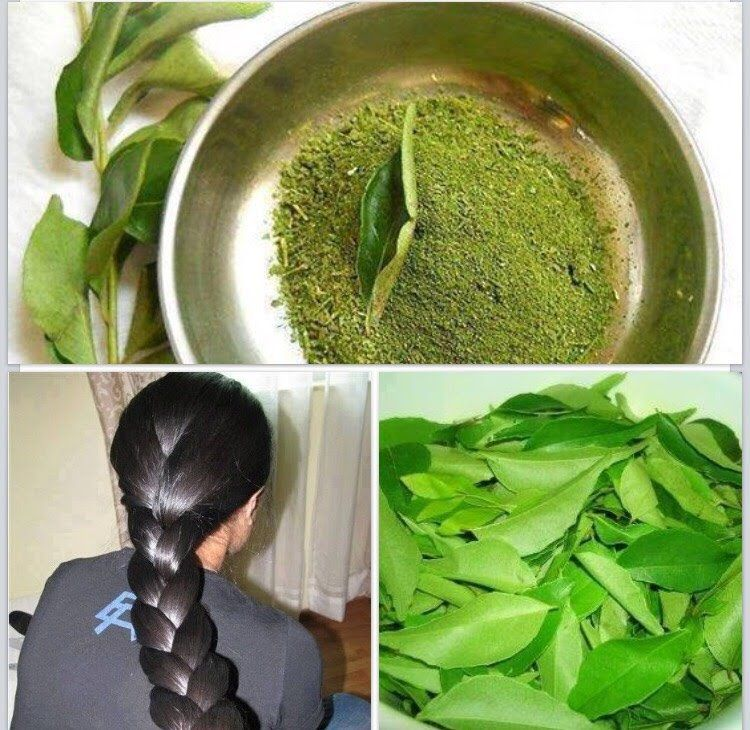 Home Remedies For Hair Growth and Thickness Coconut Milk