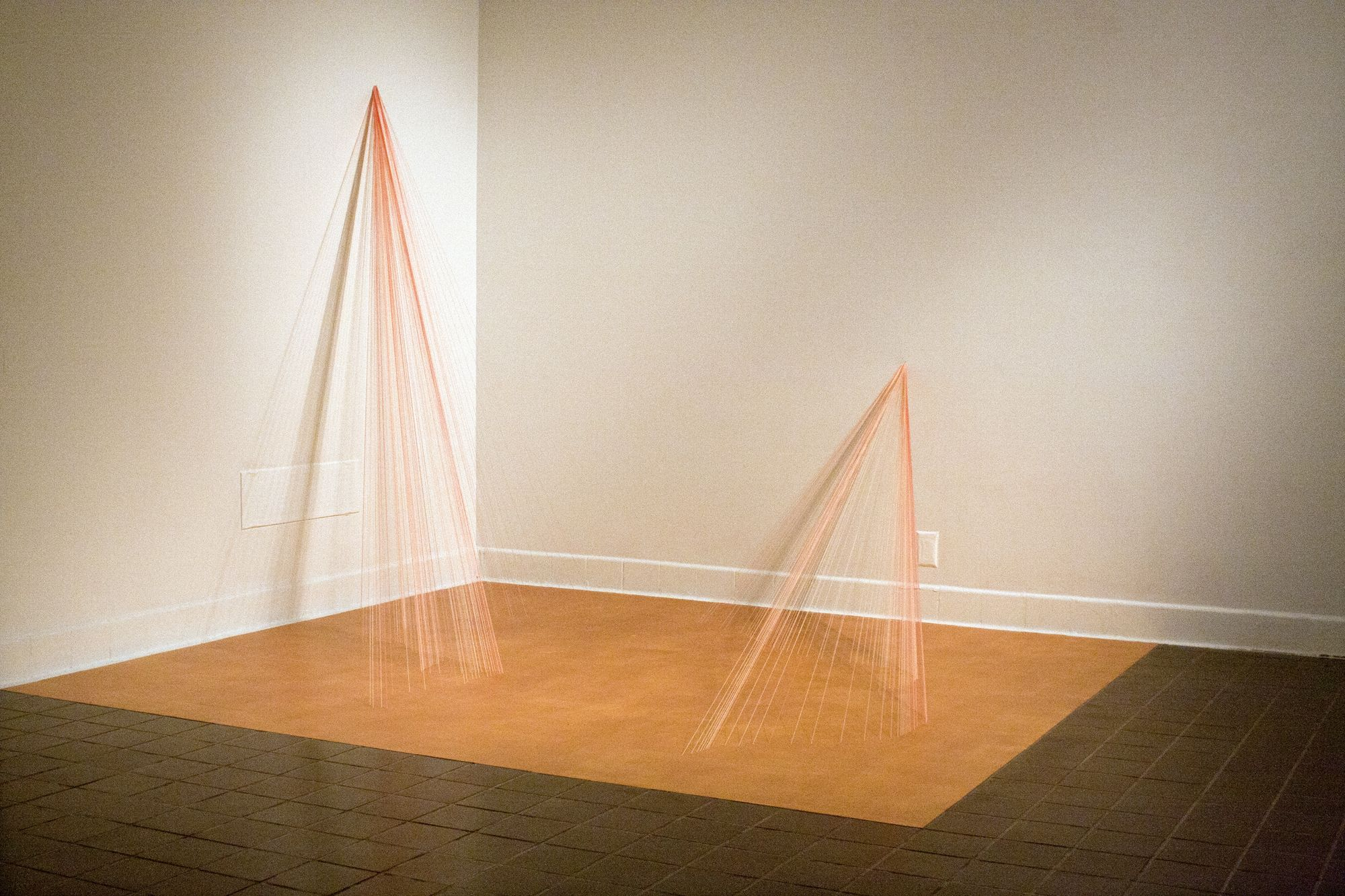 Drawing in the Expanded Field | LaVerne Krause Gallery