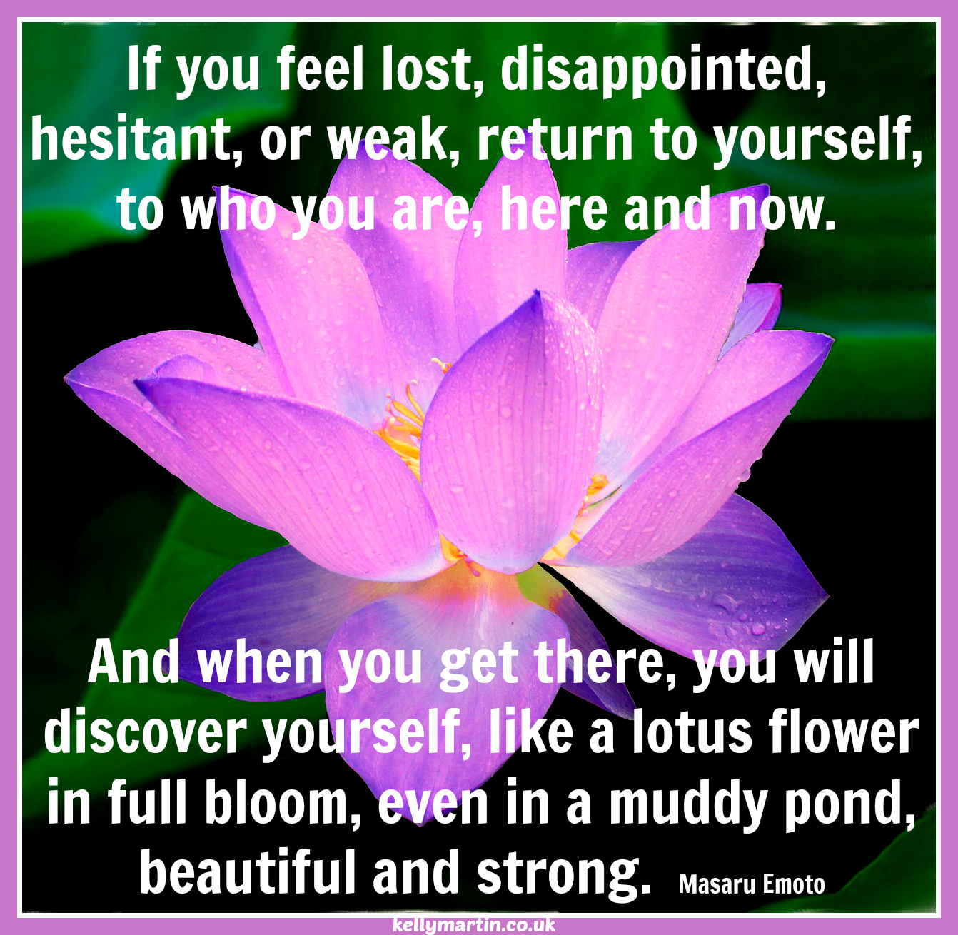 If you feel lost disappointed hesitant or weak return to hesitant or weak return to yourself to who you are here and now and when you get there you will discover yourself like a lotus flower in izmirmasajfo Images