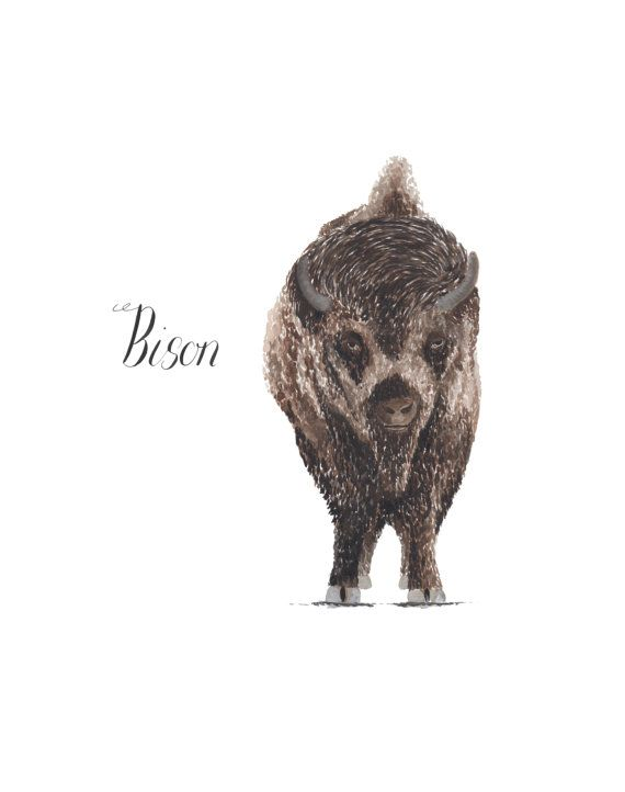 Bison by LouiseDeanDesign on Etsy