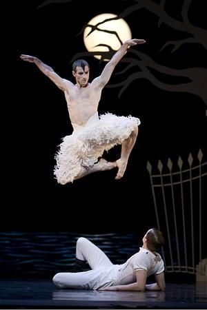 matthew bourne's Swan Lake .. this was wonderful at the theatre .. huge standing ovation at the end !