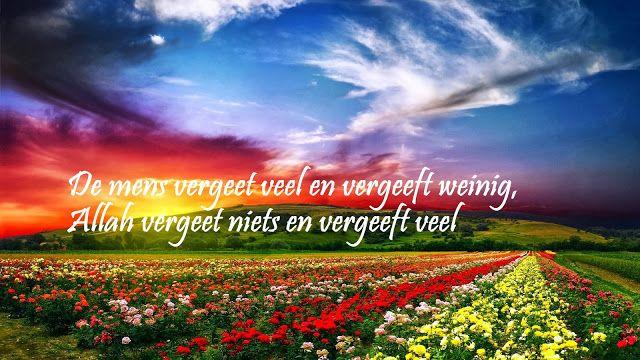 Citaten Uit Hersenschimmen : Citaten en wijze woorden uit de islam nederlandse quotes