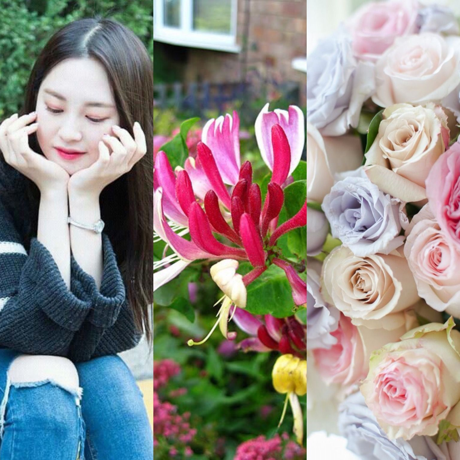 BirthFlower&KPOP // Honeysuckles & Roses // Taeha of