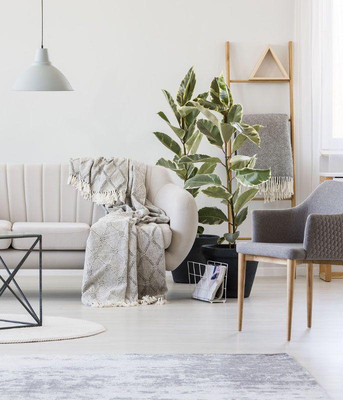 Natur Pur-Look - den Frühlings-Trend für Dein Zuhause entdecken - Wohnzimmer Design Grun