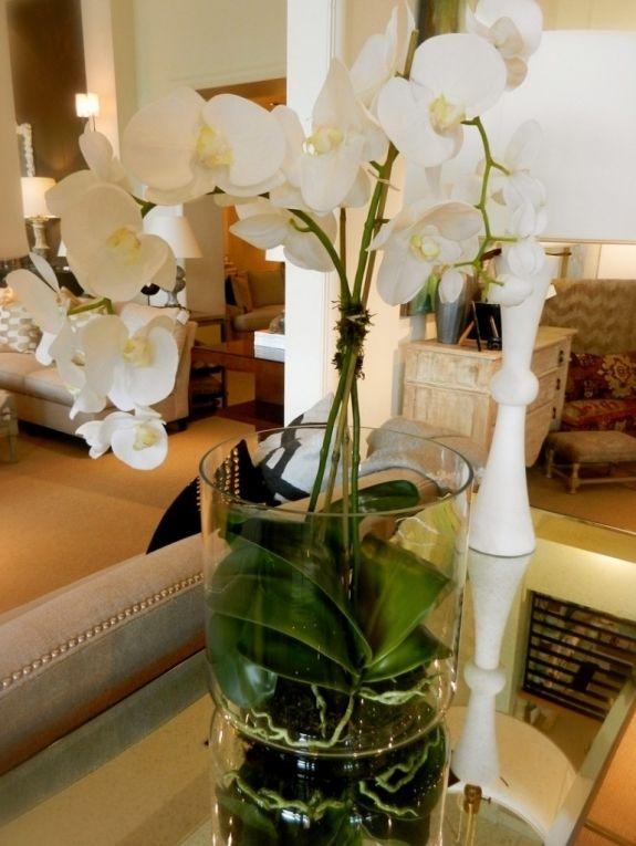 Weiss Orchidee Wohnzimmer Dekoration Interieur