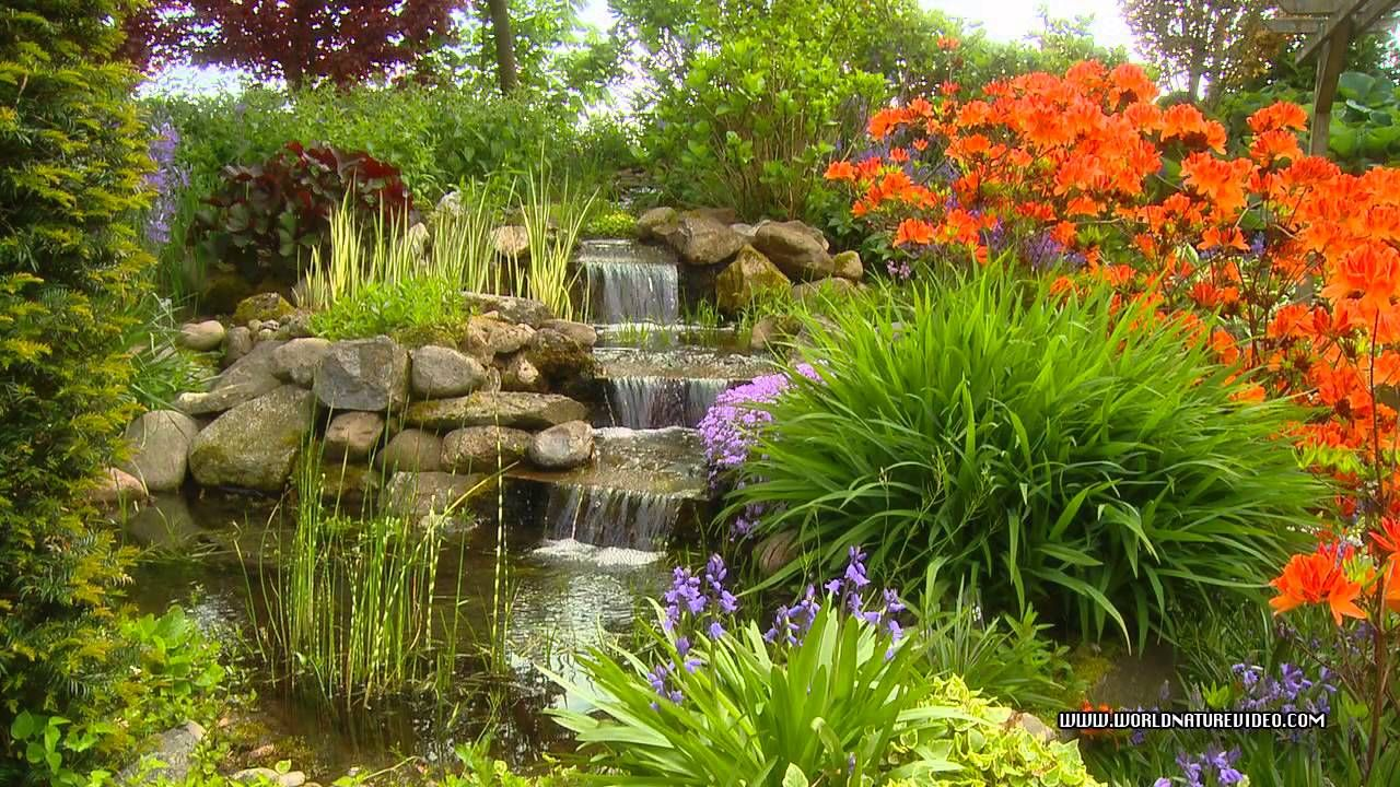 relaxing gardens - Google Search | Outside spaces | Nature