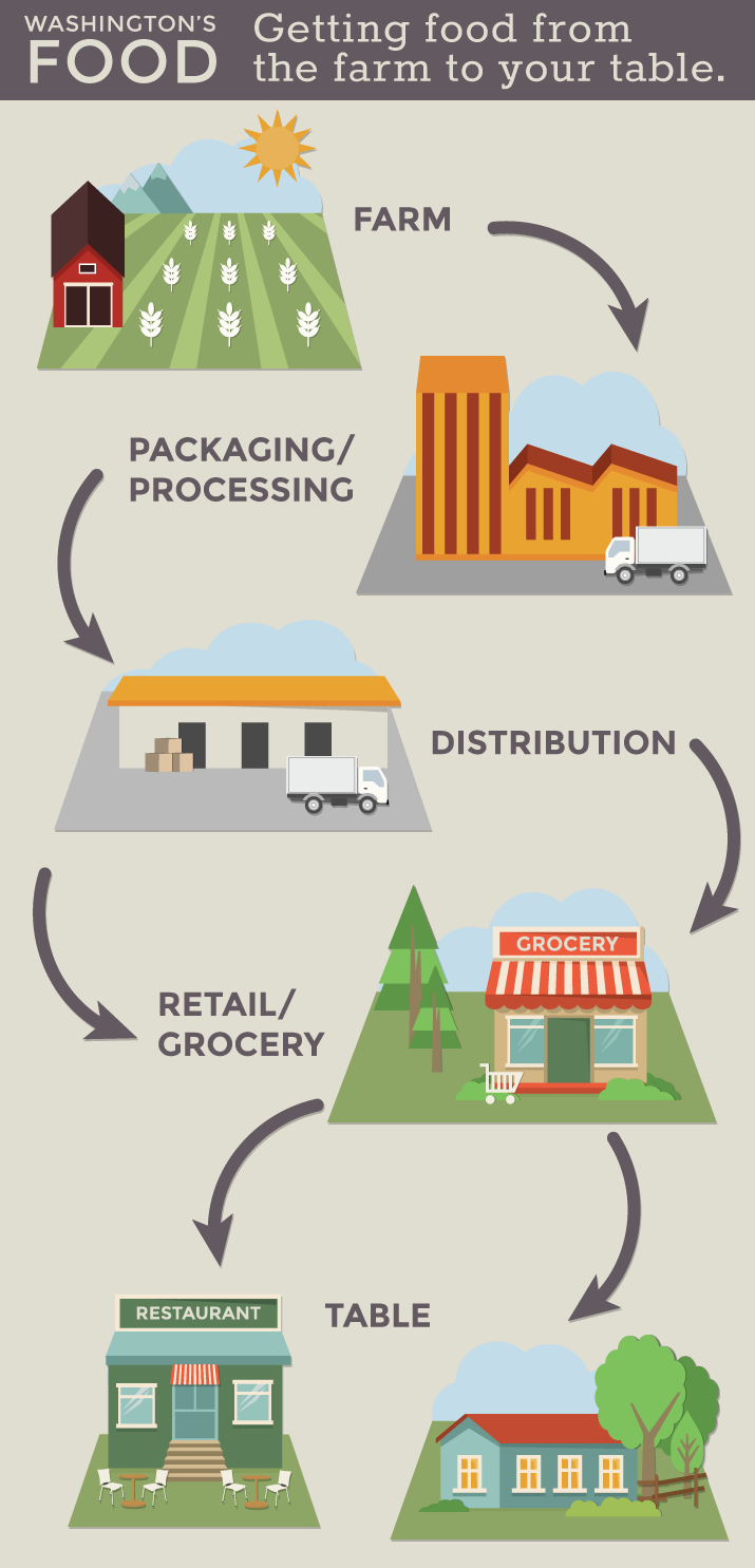 Where does our food come from? Visual supply chain