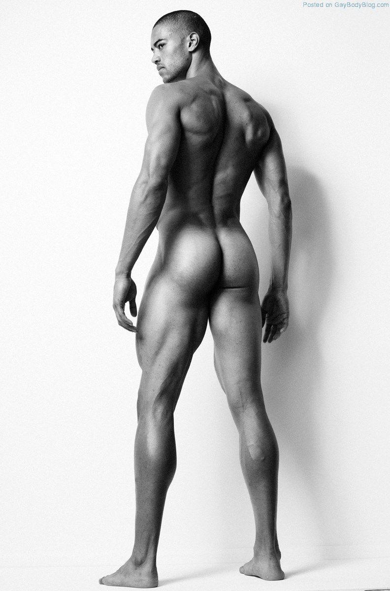 Shayne Cureton   anatomy   Pinterest   Anatomía, Fotos masculinas y ...