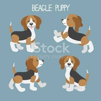 Vector Set With Cute Cartoon Dog Puppies Beagle Dog In Different