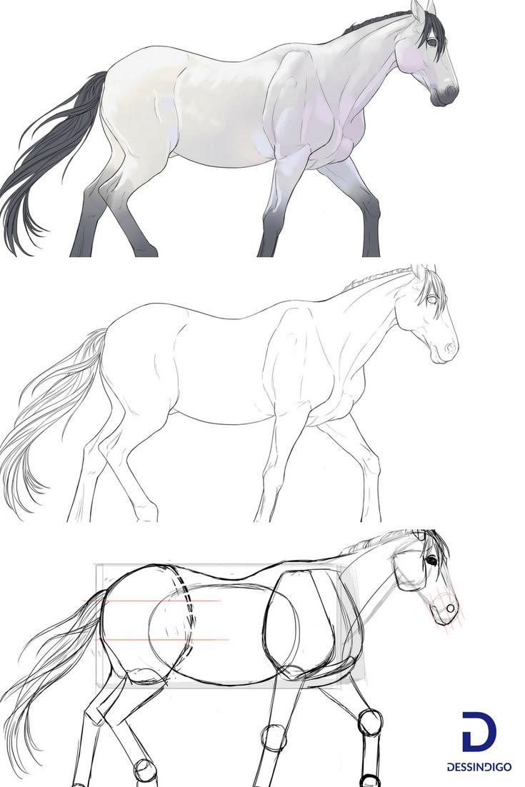Comment dessiner un cheval art tuto dessin dessin dessin cheval et dessin cheval facile - Apprendre a dessiner des chevaux ...