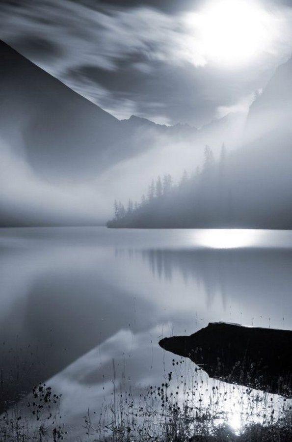Прикольные картинки со всего мира (52 фото) | Туман, Черно ...
