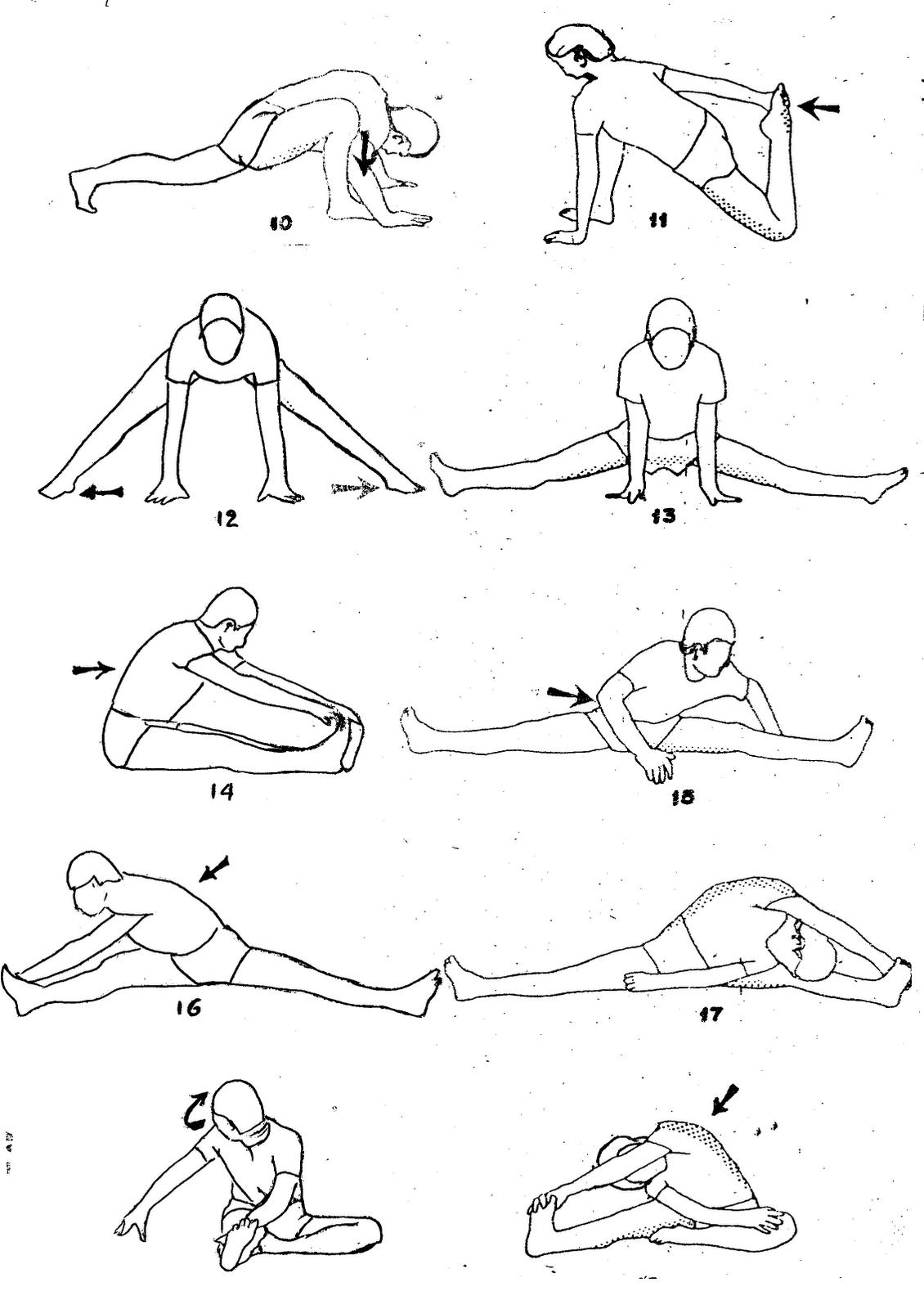 Упражнения для шпагата эффективно в картинках