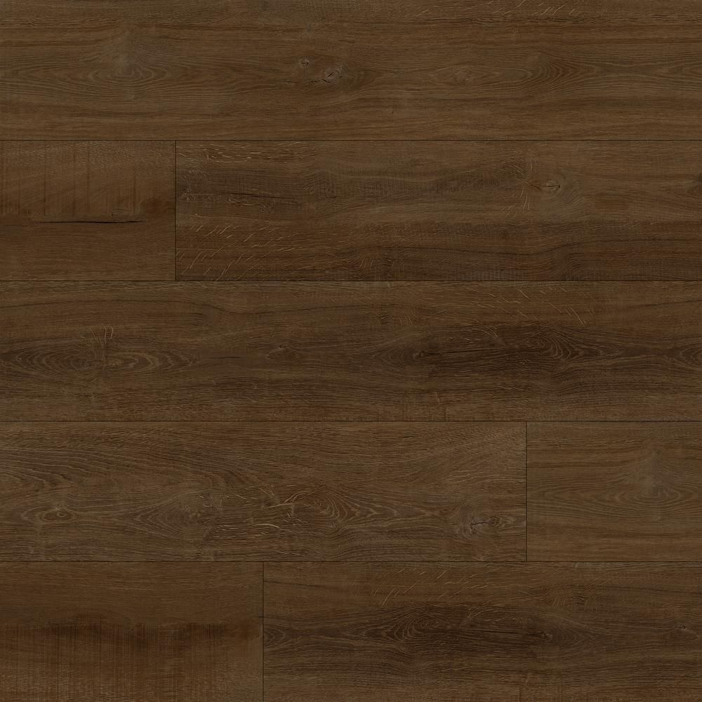MSI Nyon Gray 12 in. x 24 in. Polished Porcelain Floor and