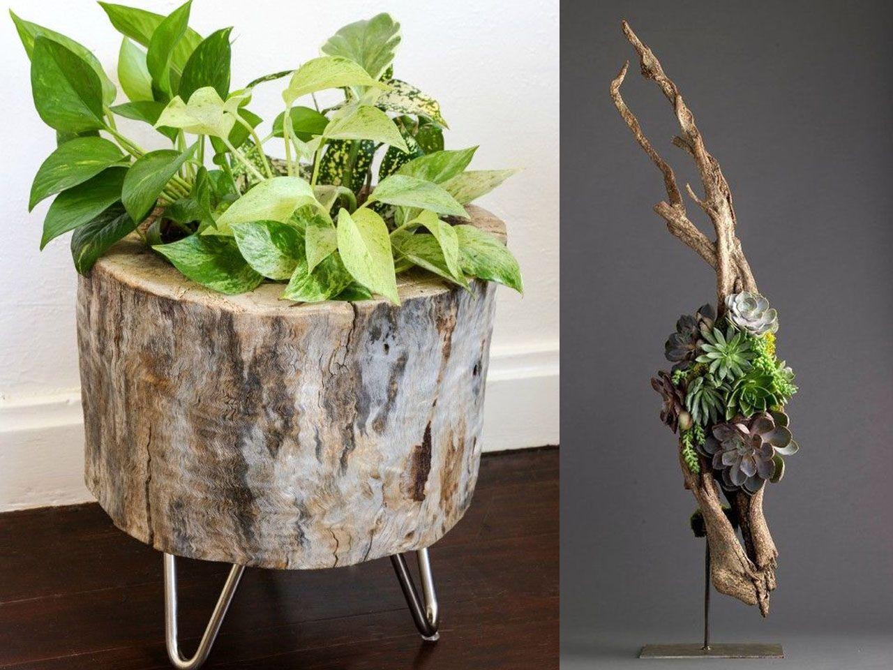 ideas molonas y rsticas de decoracin con troncos de rboles