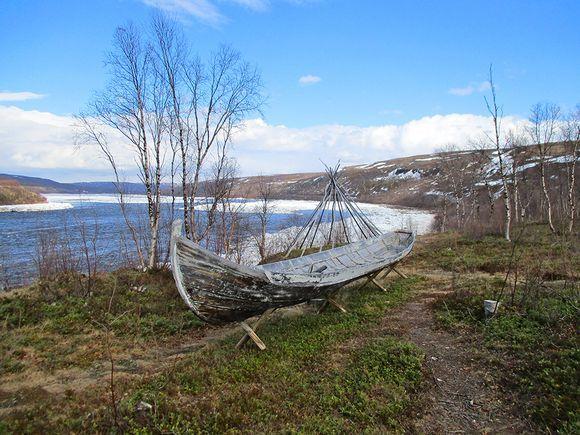 Tenon Alaköngäs vapautuu jäistä Yötön yö alkoi Lapissa