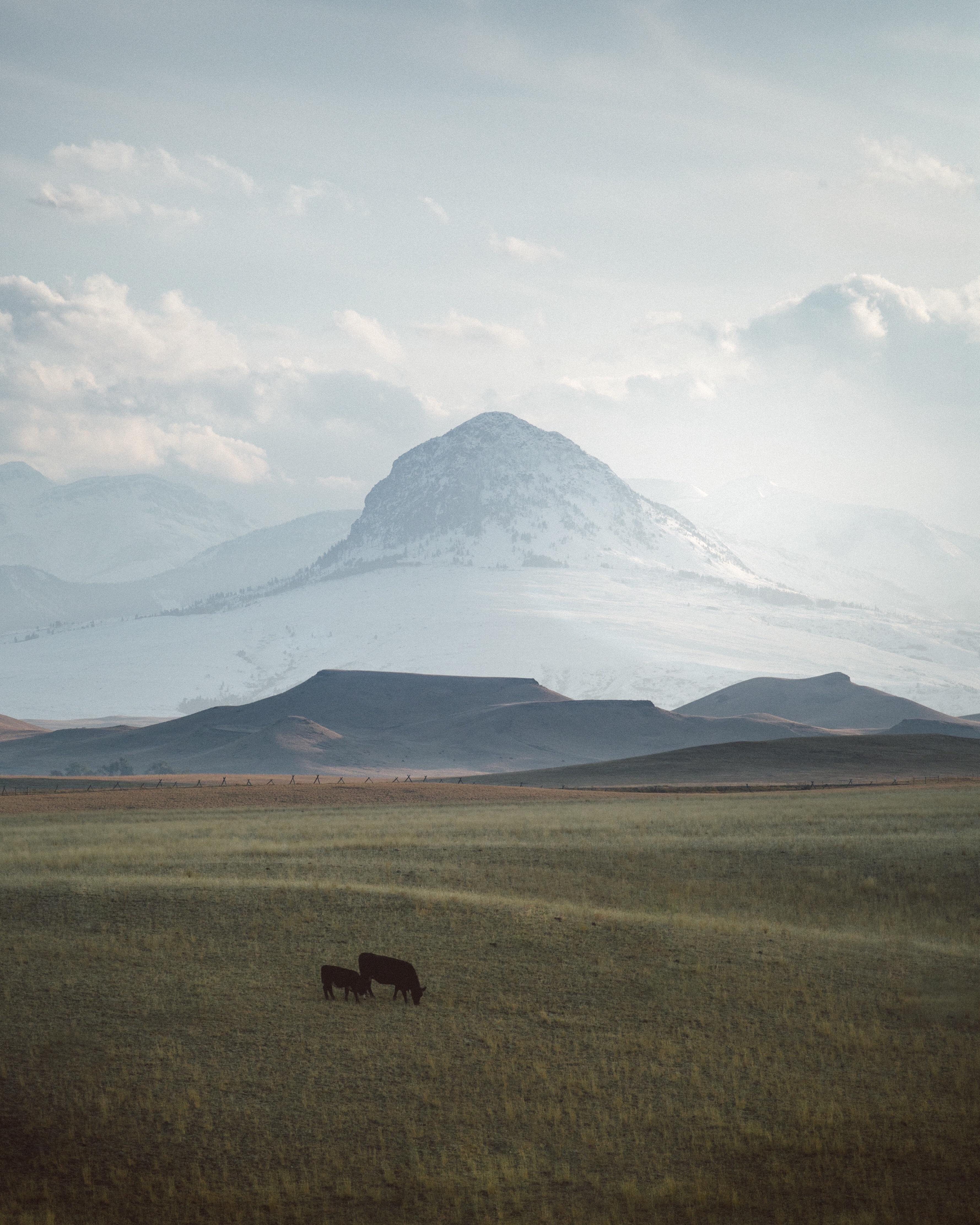 Montana moments oc x iftecgr nature